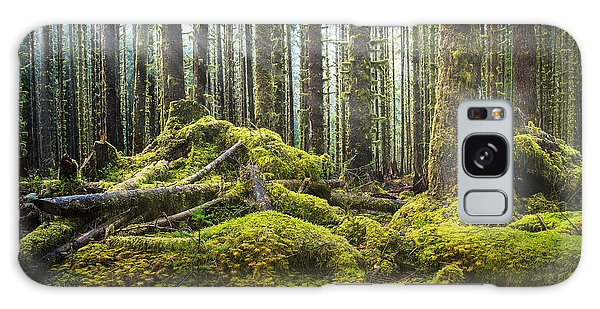 Hoh Rainforest Log Jam Galaxy Case