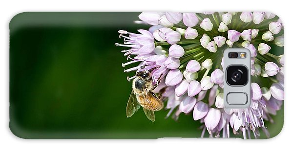 Honey Bee And Lavender Flower Galaxy Case
