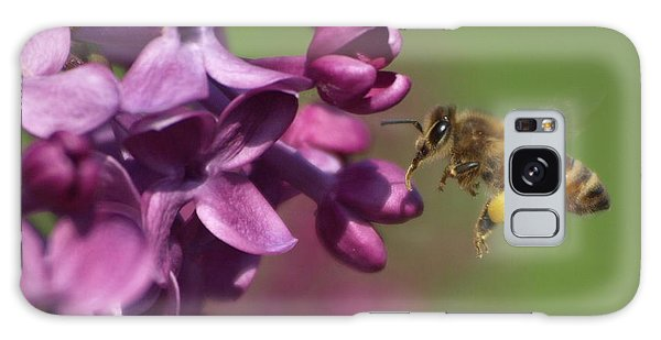 Honey Bee And Lilac Galaxy Case by James Peterson
