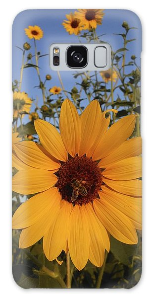 Honey Bee And Sunflowers Galaxy Case