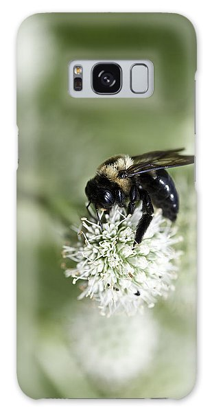 Honey Bee At Work Galaxy Case