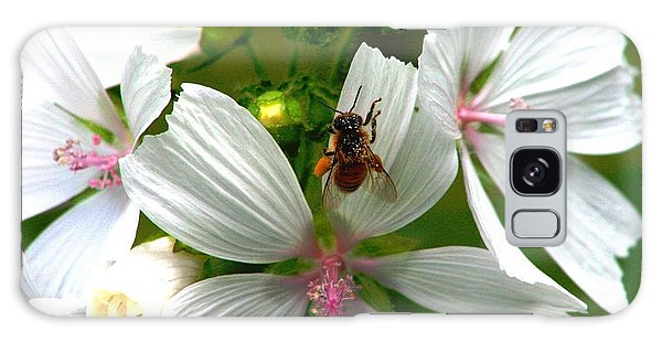 Honey Bee In The Mallow Galaxy Case