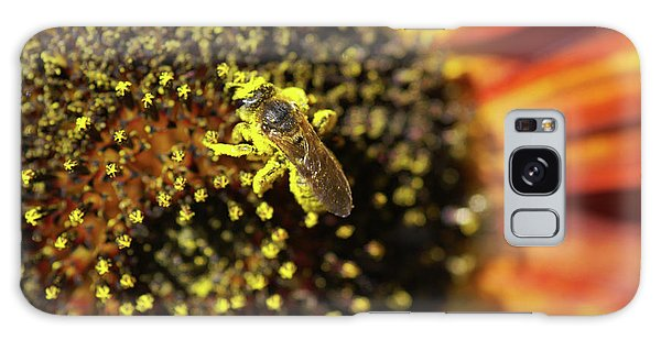 Helianthus Annuus Galaxy Case - Honey Bee Pollinating A Sunflower by Brian Gadsby/science Photo Library