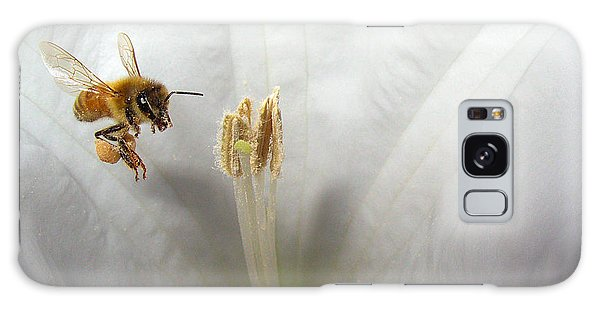 Honey Bee Up Close And Personal Galaxy Case by Joyce Dickens