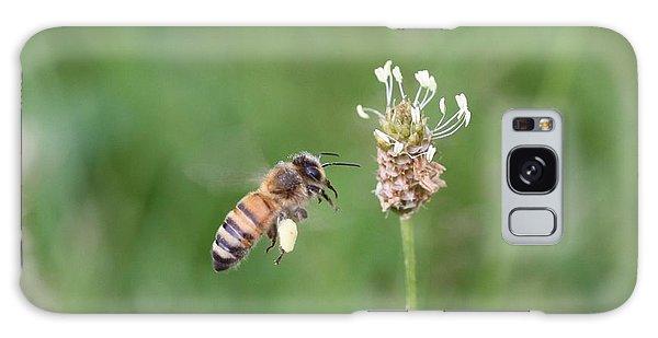 Honeybee And English Plantain Galaxy Case by Lucinda VanVleck