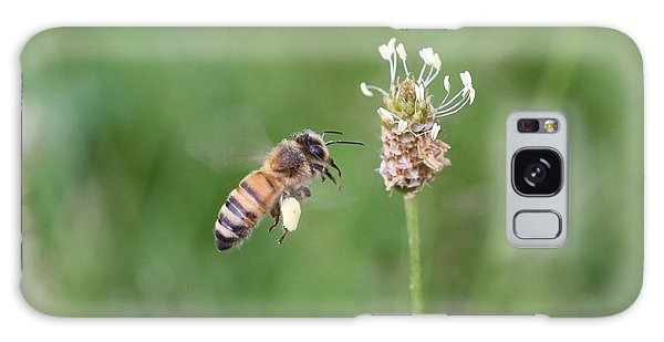Honeybee And English Plantain Galaxy Case