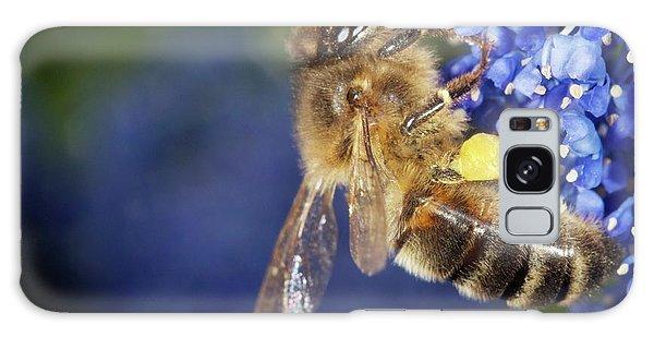 Pollen Galaxy Case - Honeybee Collecting Pollen by Sinclair Stammers