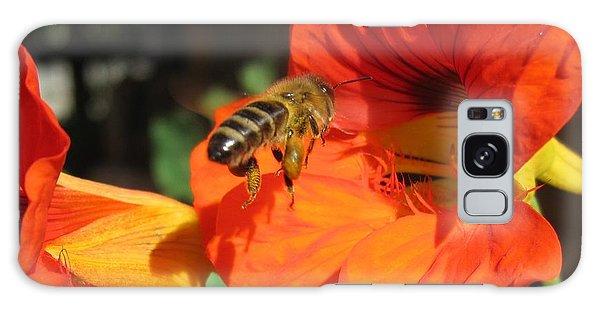 Honeybee Entering Nasturtium Galaxy Case