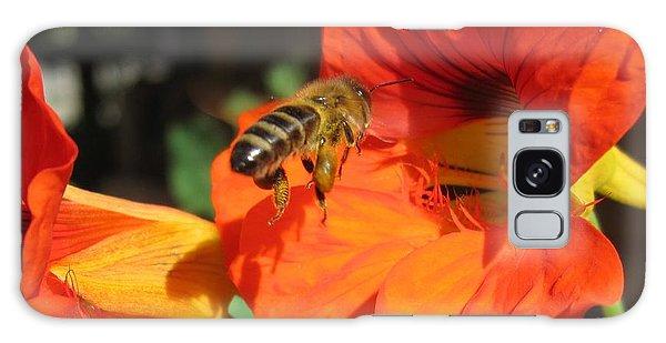 Honeybee Entering Nasturtium Galaxy Case by Lucinda VanVleck