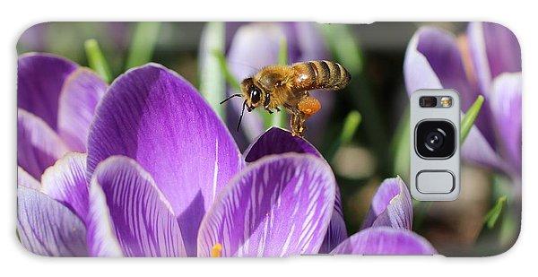 Honeybee Flying Over Crocus Galaxy Case