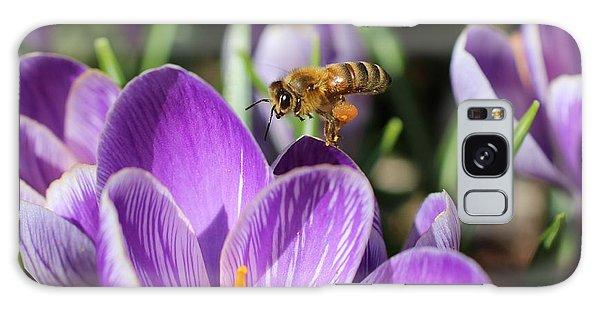 Honeybee Flying Over Crocus Galaxy Case by Lucinda VanVleck