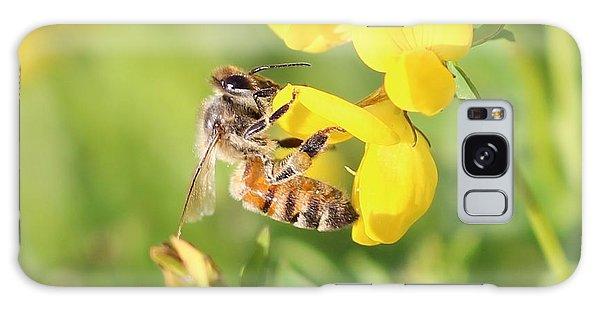 honeybee on Birdsfool Trefoil Galaxy Case by Lucinda VanVleck