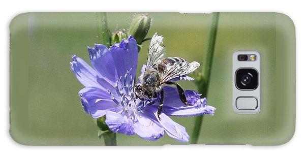 honeybee on Chickory Galaxy Case by Lucinda VanVleck
