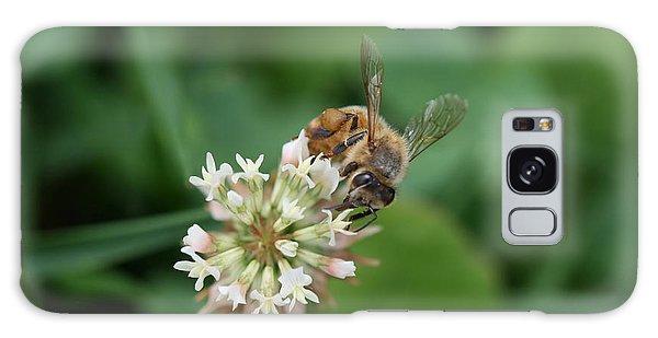 Honeybee On Clover Galaxy Case