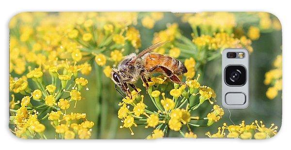 Honeybee On Dill Galaxy Case