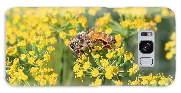 Honeybee On Dill Galaxy Case by Lucinda VanVleck