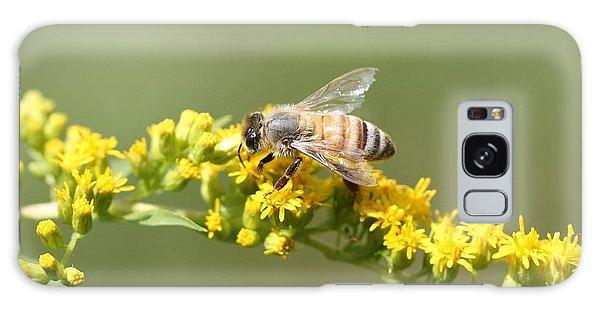 Honeybee On Goldenrod Twig Galaxy Case