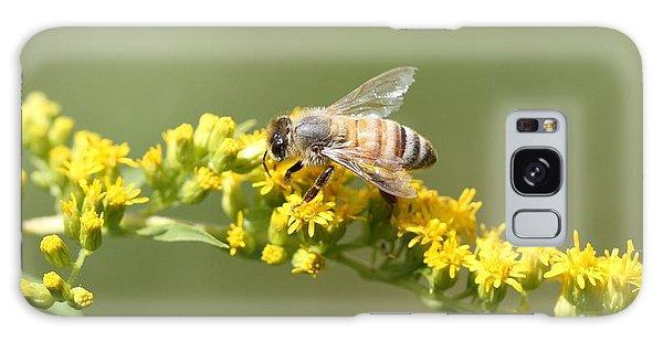 Honeybee On Goldenrod Twig Galaxy Case by Lucinda VanVleck