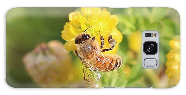 Honeybee On Hop Clover Galaxy Case by Lucinda VanVleck