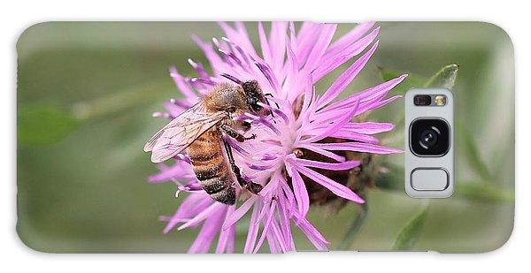 Honeybee On Ironweed Galaxy Case by Lucinda VanVleck