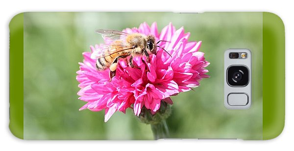 Honeybee On Pink Bachelor's Button Galaxy Case