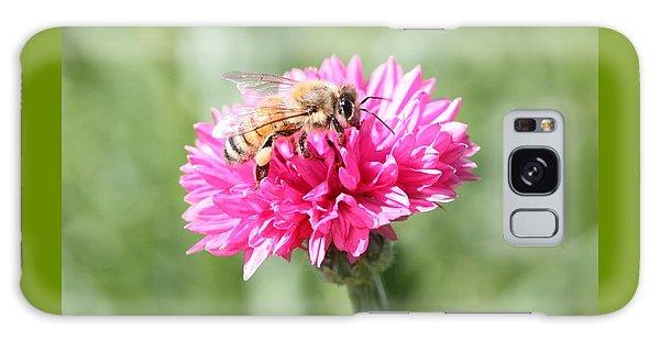 Honeybee On Pink Bachelor's Button Galaxy Case by Lucinda VanVleck