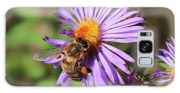 Honeybee On Purple Wild Aster Galaxy Case