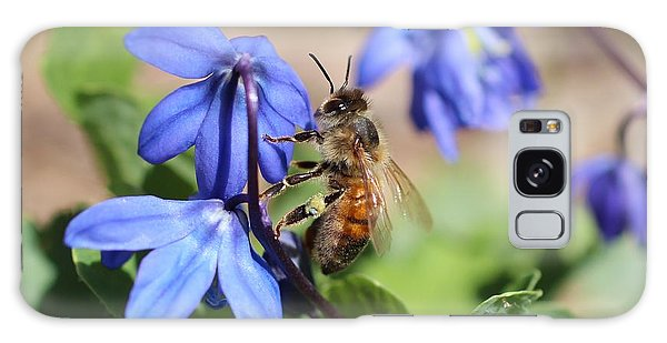 Honeybee On Siberian Squill Galaxy Case by Lucinda VanVleck
