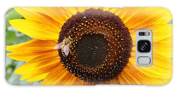 Honeybee On Small Sunflower Galaxy Case by Lucinda VanVleck