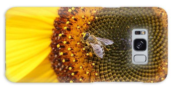 Honeybee On Sunflower Galaxy Case by Lucinda VanVleck