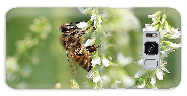 Honeybee On Sweet Clover Galaxy Case by Lucinda VanVleck