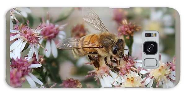 Honeybee Sipping Nectar On Wild Aster Galaxy Case