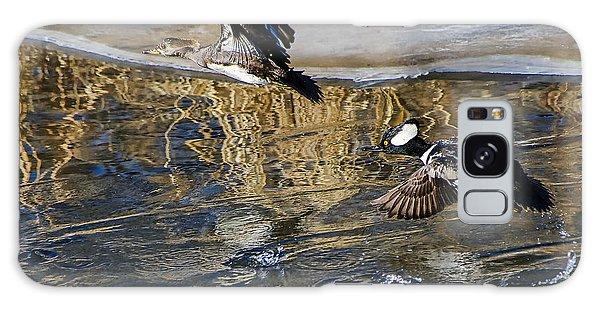 Hooded Merganser Ducks In Flight Galaxy Case by Stephen  Johnson