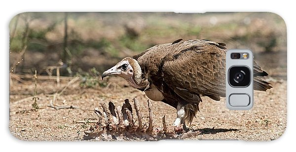 Carcass Galaxy Case - Hooded Vulture With Carcass by Tony Camacho