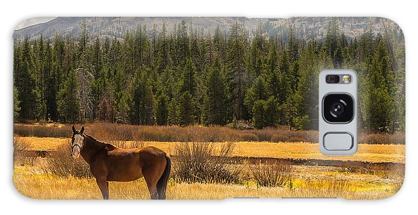 Hope Valley Horse Galaxy Case