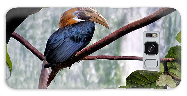 Hornbill In Paradise Galaxy Case