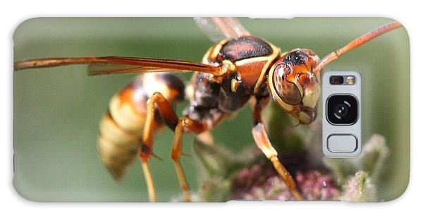 Hornet On Flower Galaxy Case