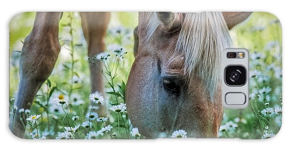 Horse And Daisies Galaxy Case by Paul Freidlund