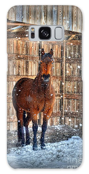 Galaxy Case featuring the photograph Horse And Snow Storm by Dan Friend