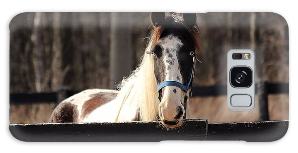 Horse At The Gate Galaxy Case