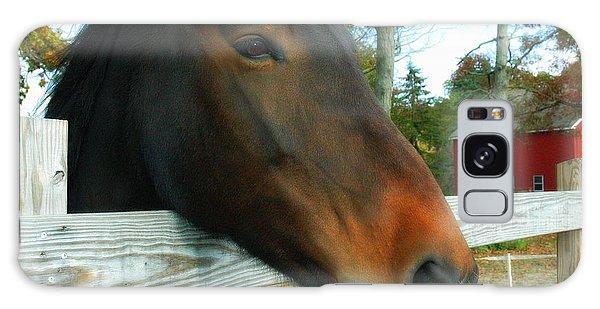 Horse Galaxy Case by Bruce Carpenter
