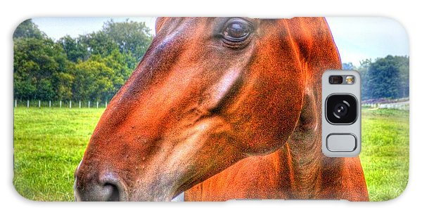 Horse Closeup Galaxy Case
