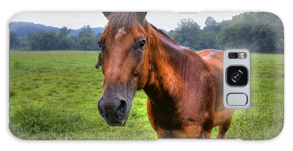 Horse In A Field Galaxy Case