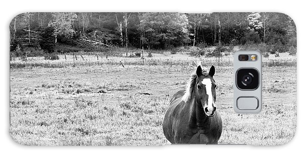 Galaxy Case - Horse In Field In Black And White by Cheryl Baxter