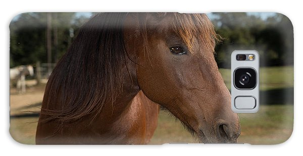 Horse In Pasture Galaxy Case