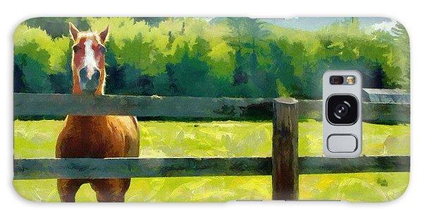 Horse In The Field Galaxy Case by Jeff Kolker
