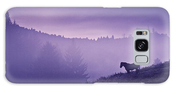 Horse In The Mist Galaxy Case