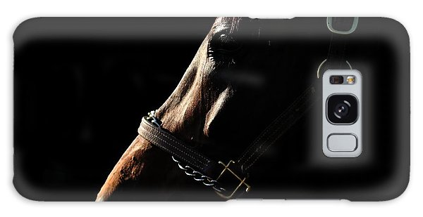 Horse In The Shadows Galaxy Case