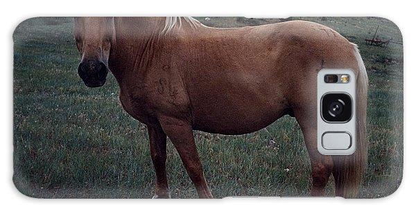 Horse Galaxy Case