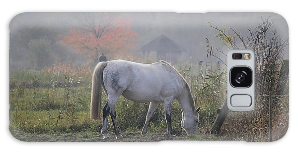 Horse On A Peaceful Day Galaxy Case